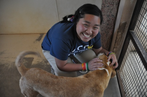 bfas 13 angela playing with a dog at the sanctuary
